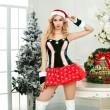聖誕情趣制服女士性感情趣睡衣